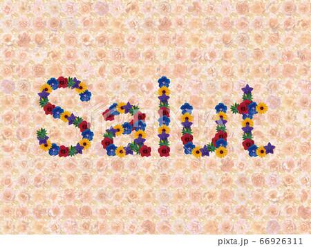 花「こんにちは(フランス語_A)」(イージータイム) 66926311