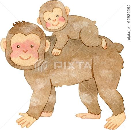 猿の親子 66926399