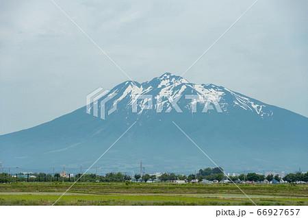 【青森県岩木山】津軽平野の水田と岩木山 66927657