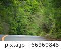 【京都】夏のドライブ 66960845