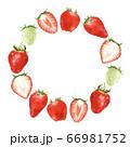 色々な苺のリース 水彩風イラスト 66981752