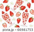 苺パフェと苺の柄 水彩風イラスト 66981753