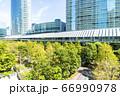 緑の多いオフィス街の風景 66990978