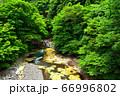 塩原温泉を流れる鹿股川 66996802