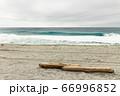 ビーチに流れ着いた流木 66996852