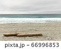 ビーチに流れ着いた流木 66996853
