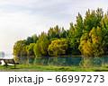 透き通る湖と湖畔のベンチ 66997273