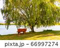 静かな湖と湖畔のベンチ 66997274