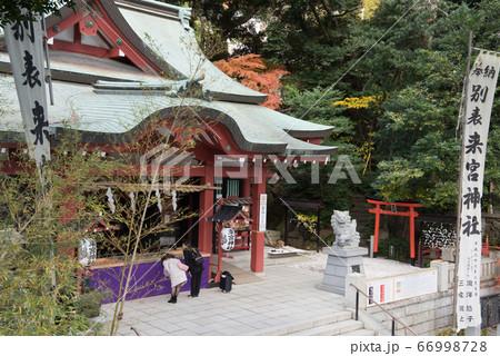 静岡の熱海にあるパワースポットの来宮神社 66998728