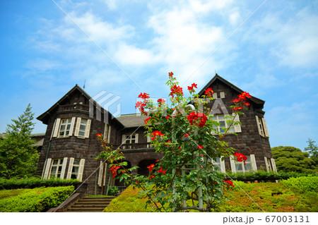 旧古河庭園の洋館とバラ園 カクテル 67003131