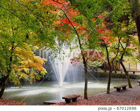 秋の風景 67012696