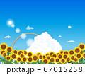 青空とヒマワリの風景イラスト 67015258