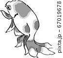 浮世絵 金魚 その27 67019678