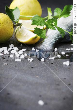 Raw seabass with salt, lemon and parsley 67023641