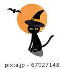 ハロウィーン 黒猫 67027148