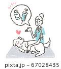 動物病院で獣医師によるペットに狂犬病予防ワクチンを促すイラスト 67028435