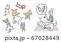 動物病院で獣医師によるペットに狂犬病予防ワクチンを促すイラスト 67028449