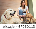 Woman in blue jeans next to two dogs on street in afternoon 67060113