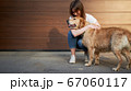 Happy woman in blue jeans hugging dog outdoors in afternoon 67060117