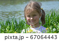 Portrait of a smiling little girl in the grass 67064443