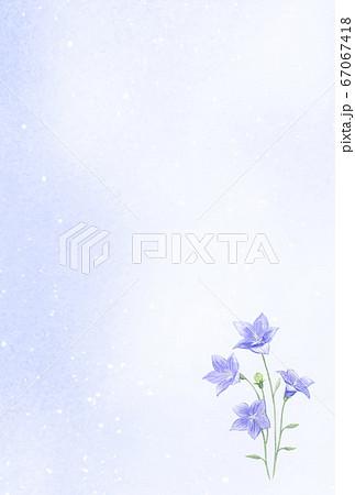 水彩で描く桔梗のはがきテンプレート 67067418