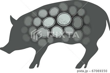 豚インフルエンザ - イメージ・グレー 67069350