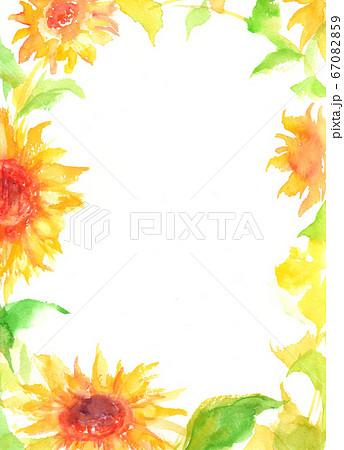 ひまわり 夏 イラスト フレーム 暑中見舞い 水彩 手描き 67082859