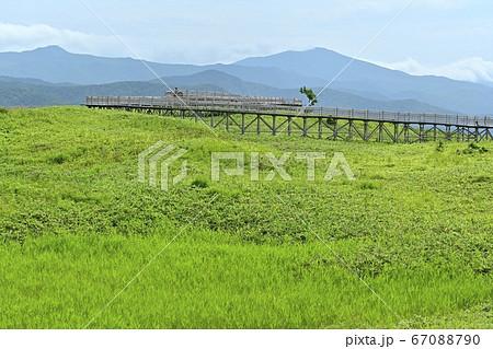 知床一湖への高架木道からの遠音別岳方面 67088790