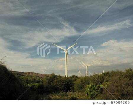 台湾桃園の砂丘「觀音草漯沙丘」夕方の風車 67094209