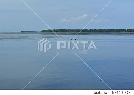 野付半島の観光船からゴマフアザラシ浮かぶ野付湾の浅瀬 67113038