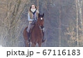 Equestrian sport - rider woman on horse walking in snowy outdoor 67116183