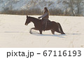 Equestrian sport - rider woman on horse galloping in snowy field 67116193