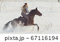 Equestrian sport - rider woman on horse galloping in snowy field 67116194