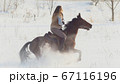 Equestrian sport - rider woman on horse galloping in snowy field 67116196