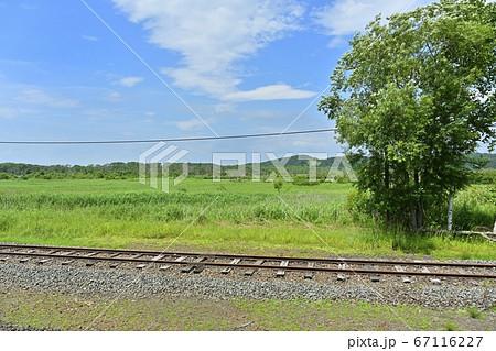 釧網本線塘路駅から線路と釧路湿原 67116227