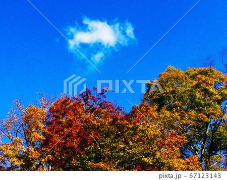 水沢もみじ谷の紅葉の上のハート型の雲 67123143