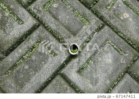 裏山の急傾斜地の土留め用コンクリート積みブロック擁壁の石灰しみだしや苔の写真 67147411