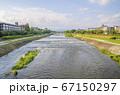 京都の鴨川 67150297