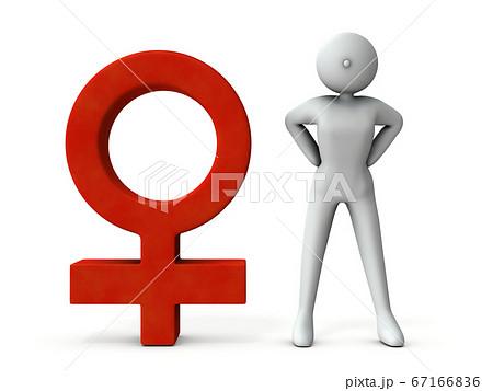女性と女性を表す記号。3Dレンダリング。 67166836