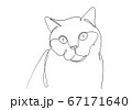 One line drawing of the cat in modern minimalistic style, Single line draw graphic design illustration 67171640