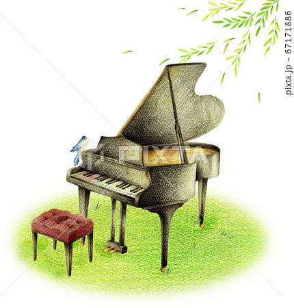 新緑の中の黒いピアノと青い鳥 67171886