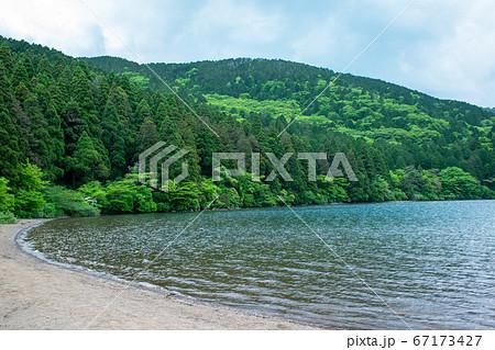 芦ノ湖の湖畔 箱根やすらぎの森、神奈川県箱根町 67173427