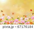 水彩の紅葉とコスモス風景 67176184