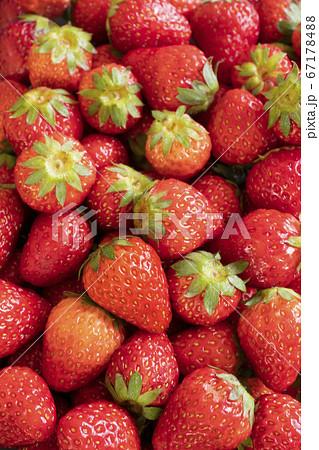 新鮮なイチゴで埋め尽くされた背景素材 67178488