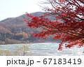 紅葉に染まった猪苗代湖 67183419