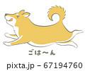 犬・柴犬(ごはん)ベクター 67194760