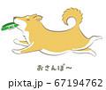 犬・柴犬(おさんぽ)ベクター 67194762
