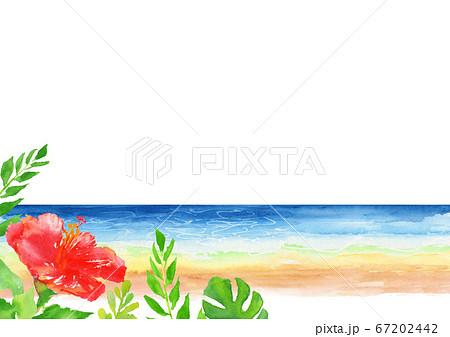 海 ハイビスカス 背景 イラスト 水彩  67202442