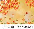 水彩の紅葉背景付き 67206381