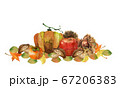 秋の味覚水彩画 67206383